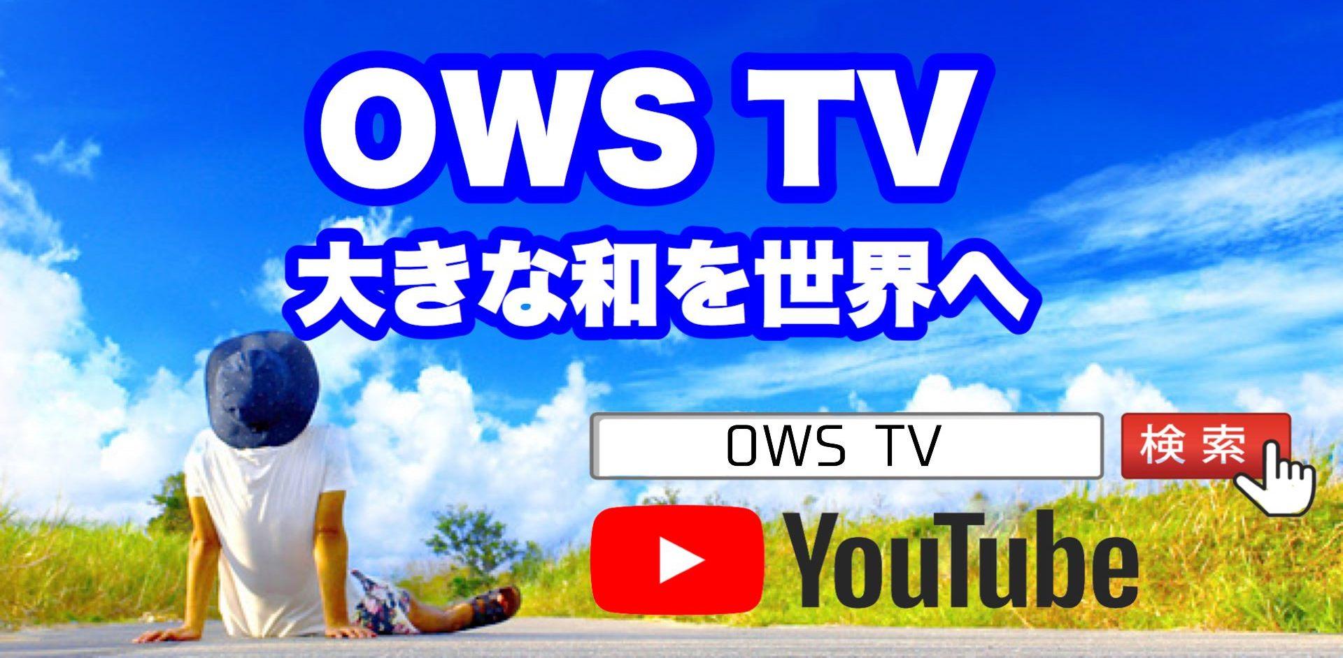☆ 大きな和を世界へ(OWS) ☆